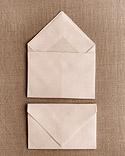 Napkin envelope2