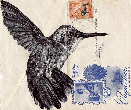 Hummingbird envelope bic pen
