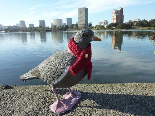 Pigeon lake
